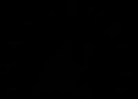 Logo de Transboréal